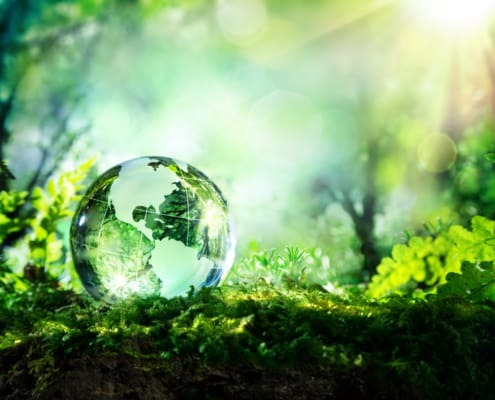 biobased adhesives and sealants from sustainable resources